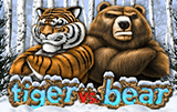 Tiger vs Bear